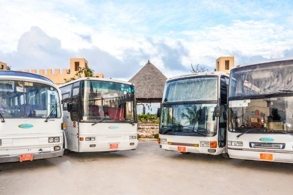 ZanTours Busses